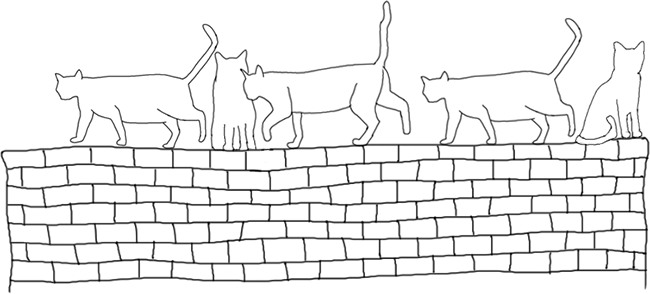 A wall on which there are several cats. Some are sitting, but there are three of them walking one after another. According to the theory, our brain is more likely to see these three as a group.