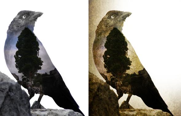 aplicar-texturas-cuervo